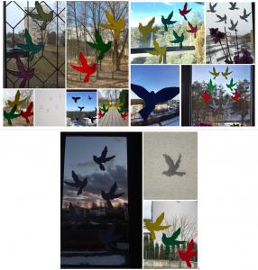 Laisvės paukštis